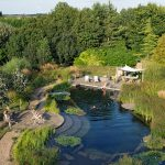 natural pools biotop-swimming-teich-ellicar-su%cc%88d-yorkshire-grosbritannien-1