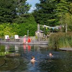 natural pools biotop-swimming-teich-ellicar-su%cc%88d-yorkshire-grosbritannien