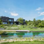 natural pools biotop-swimming-teich-klassischer-teich-in-stadtrandlage-o%cc%88sterreich