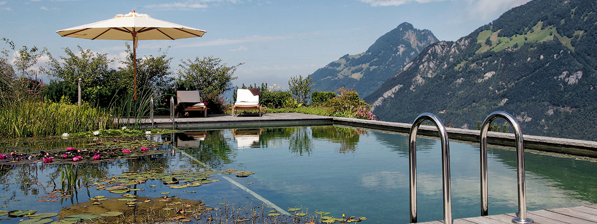 Elements Of Nature Natural Swimming Pools Natural Living Pools